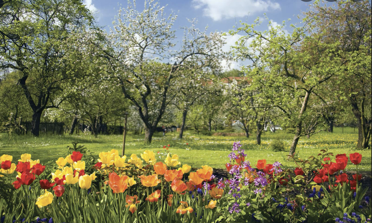 Spring has Sprung – is now the best time to sell